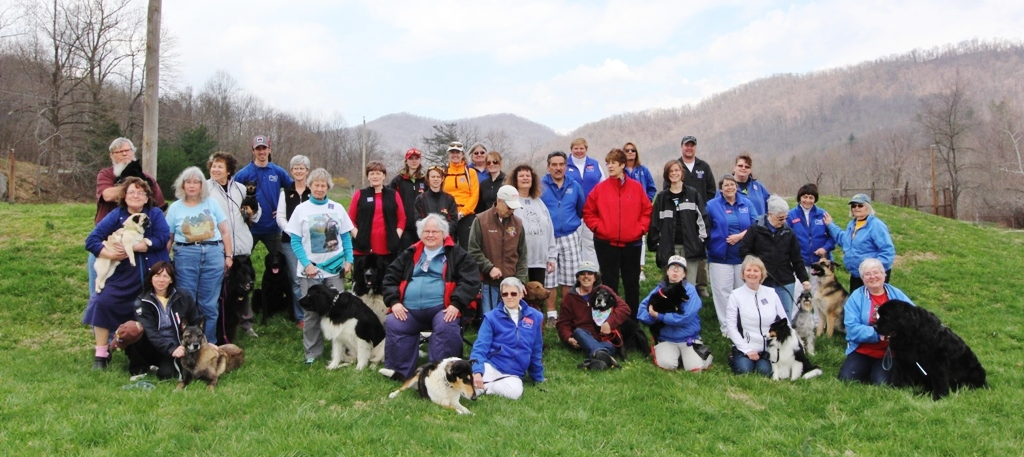 Mahogany Ridge Dog Training Camp 2014