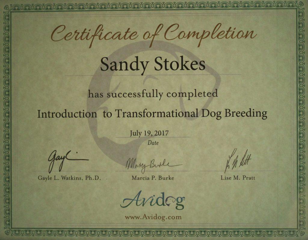 ITDB Certificate