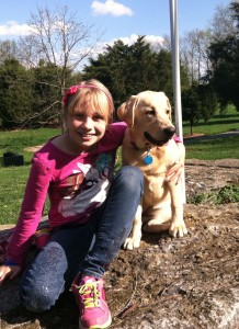 Willow & Lollie - AKC S.T.A.R. Puppy  Program